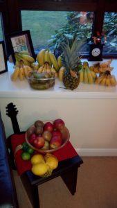 Unsere Obstplantage für Zuhause